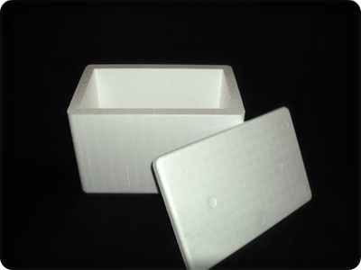 22l-expanded-polystyrene-cooler-box-